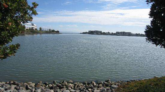Residence Inn San Francisco Airport/Oyster Point Waterfront: View from walking trail at rear of Residence Inn.