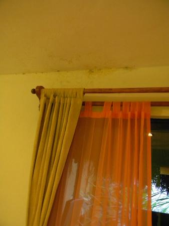 Caracol Suite Hotel: Mold over the window