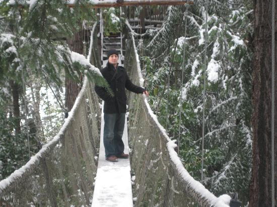 Out 'n' About Treehouse Treesort: Me standing on one of the suspension bridges