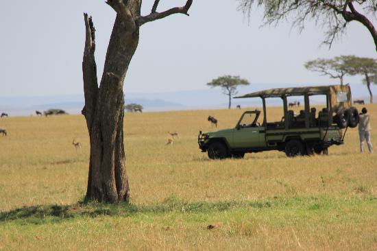 Ubuntu Camp, Asilia Africa: Lunch on the Serengeti Plains