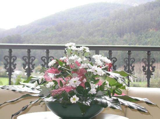 Hotel O Val Do Naseiro: Vistas desde la habitación