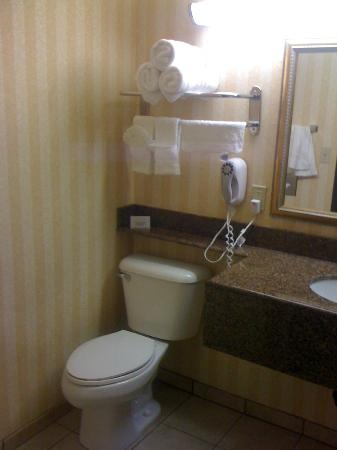 Comfort Inn & Suites near Long Beach Convention Center: Bathroom toilet/sink area.