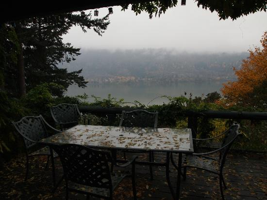 Lakecliff Bed and Breakfast: View from the patio off of the dining room (Imagine if the sun was out!)