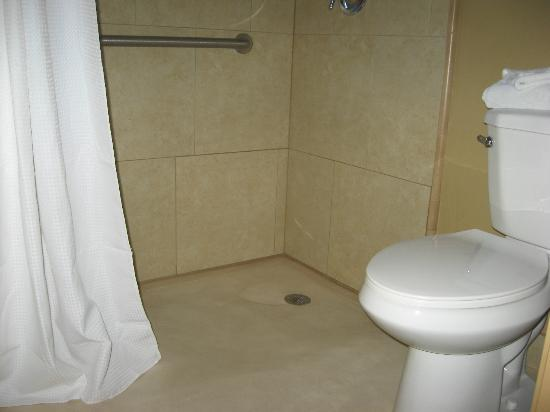 Best Western Royal Sun Inn & Suites: Roll-in shower and toilet area