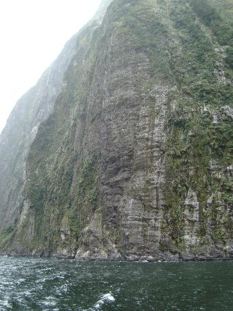 Real Journeys : Overcast, dreary Milford Sound