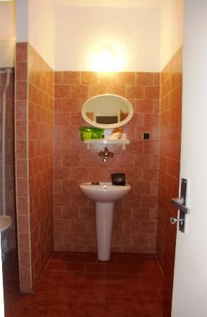 Hotel Michle: душ+туалет
