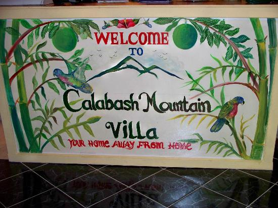 Calabash Mountain Villa: Original artwork adorns our front desk