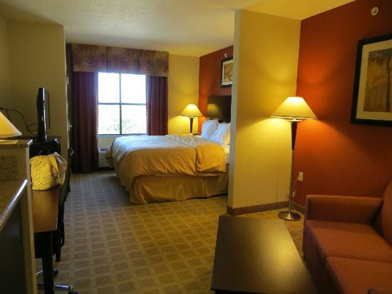 Comfort Suites Vero Beach : Room 311