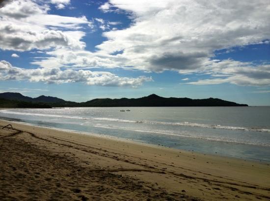 Camaron Dorado: Playa Brasilito