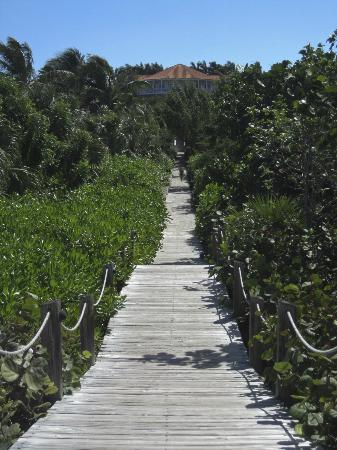 Parrot Cay by COMO: Walkway from Beach up to Terrace Restaurant