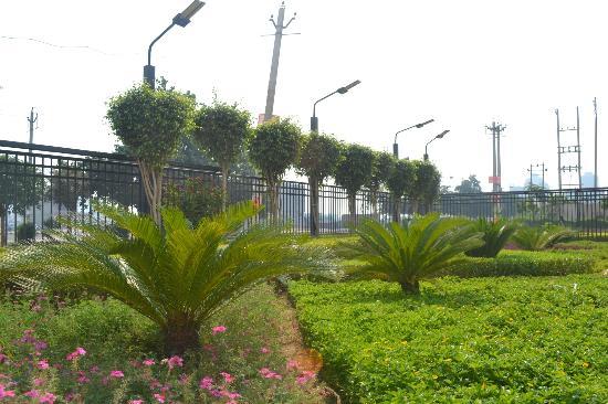 Savoy Suites Manesar: Garden surrounding Savoy Suites