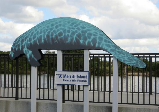 ‪فيرفيلد إن آند سويتس ماريوت تيتوسفيل: Manatee Viewing Area  - Merritt Island‬