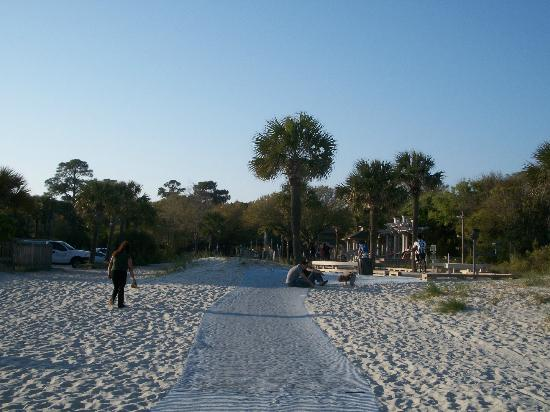 Хилтон-Хед, Южная Каролина: Walking back to the Boardwalk area