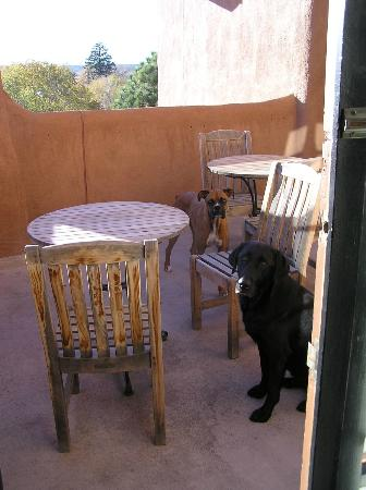 Inn and Spa at Loretto: Jake and Junior enjoy the shared patio