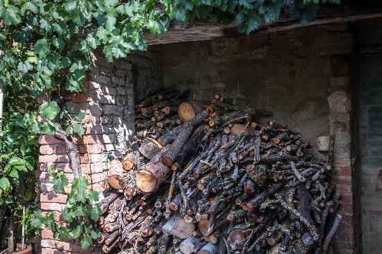 Pieve a Pava: Around the grounds