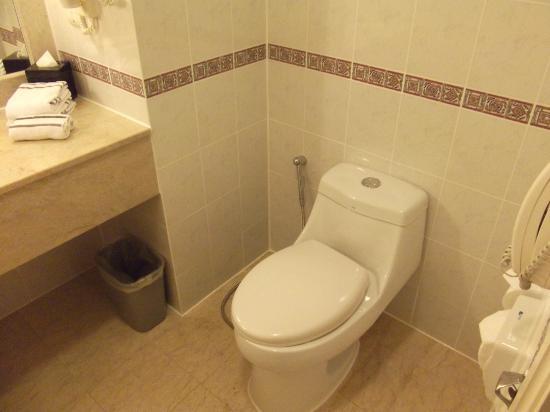 Hotel Equatorial Melaka: Toilet