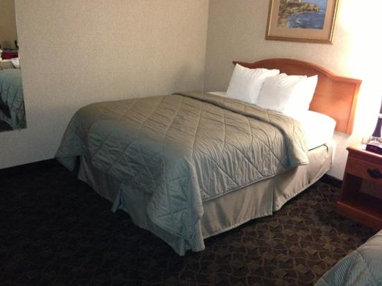 Comfort Inn: double queen room