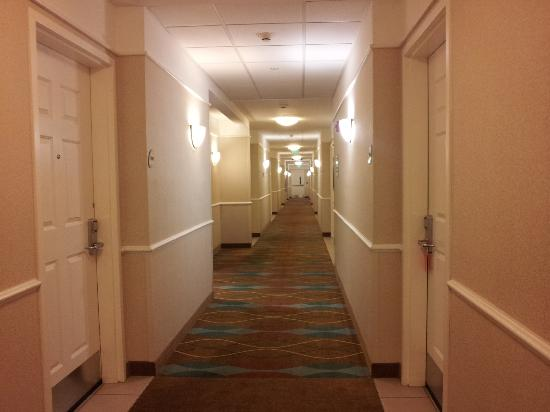 La Quinta Inn & Suites Norfolk Airport: Hallway