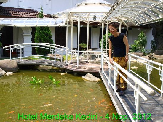 Hotel Merdeka : Kolam yang diisi dengan ikan