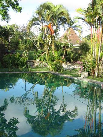 Aqua Villa: large pool