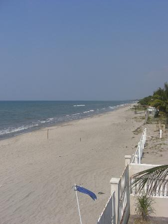 Diving Pelican Inn : View of beach from hotel sundeck