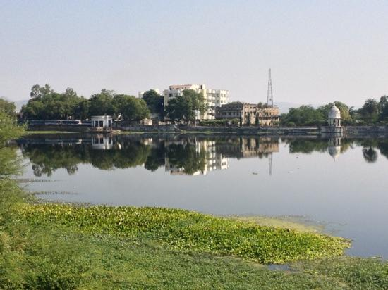 Hotel Swaroop Vilas: the lac near the hotel
