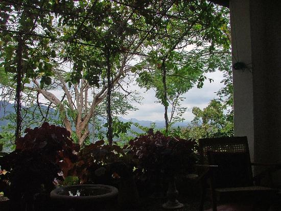 Halgolla Plantation Home: View from verandah
