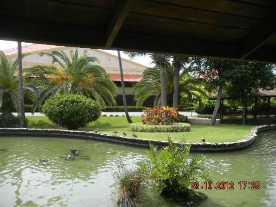 Grand Palladium Punta Cana Resort & Spa : El lago