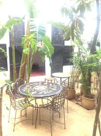 Riad Tibibt: le patio au soleil!