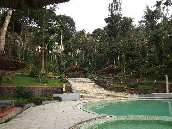 Wild Corridor Resort and Spa by Apodis: View from the pool