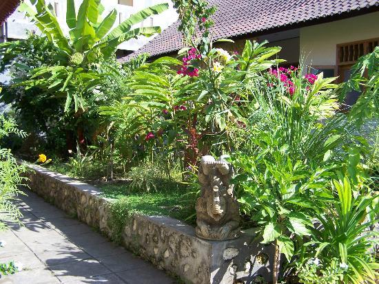 Jimbaran Home Stay : The courtyard garden