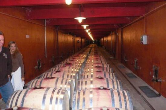Mas du Clos de l'Escarrat  Wine Tasting Tours: Casks