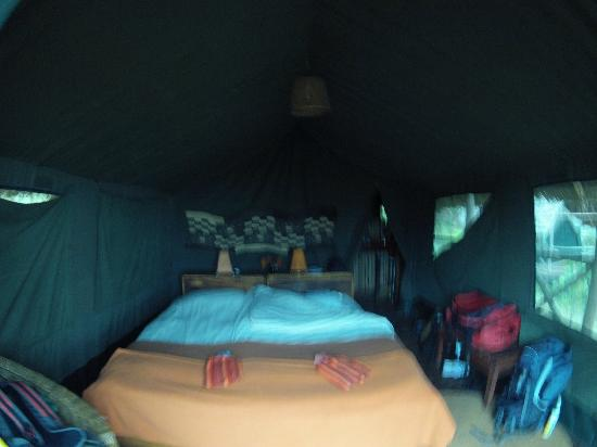 Rhotia Valley Tented Lodge: The tent