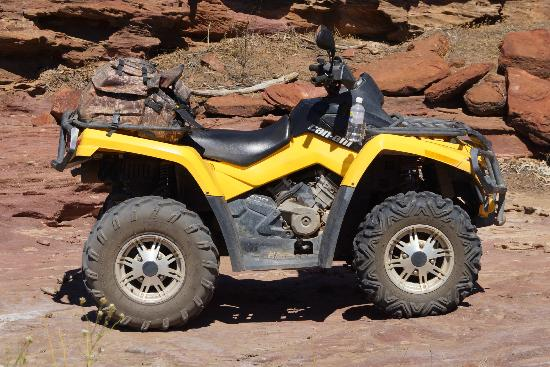 Kalbarri Quadbike Safaris: Leader Quad