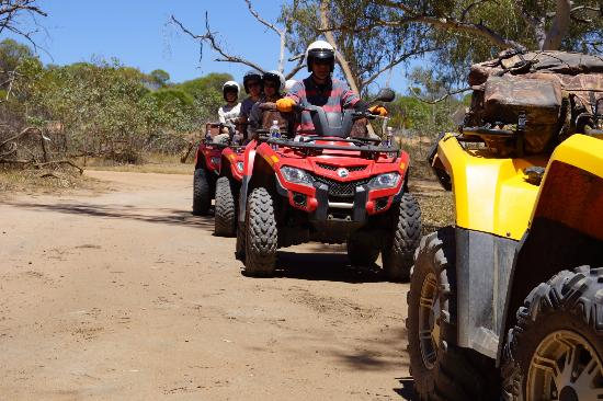 Kalbarri Quadbike Safaris: Line up