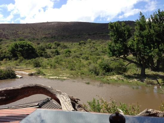 Shamwari Game Reserve Lodges: View from the deck during lunch.