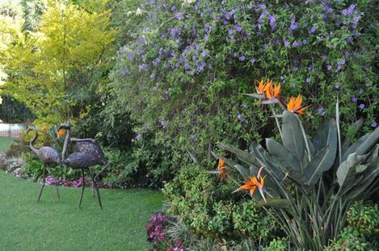 Cotswold Gardens Guest House: in the garden
