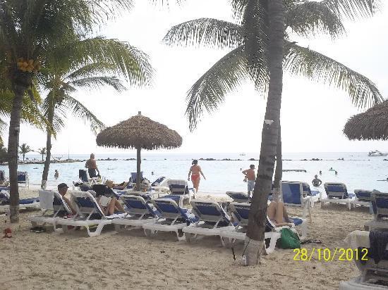 رينيسانس أروبا ريزورت آند كازينو: Isla privada Iguana Beach 