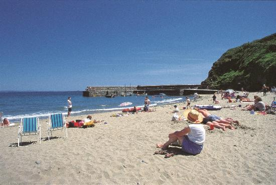 local beach picture of sun valley holiday park st austell tripadvisor. Black Bedroom Furniture Sets. Home Design Ideas
