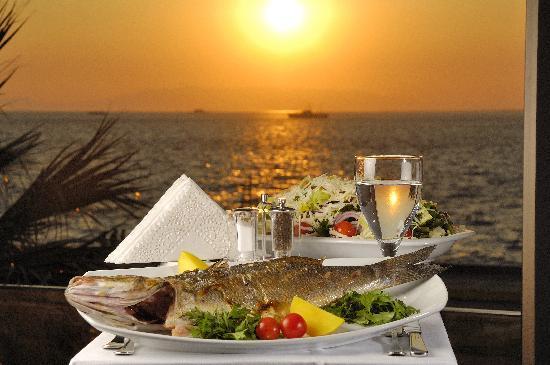 Birinci Kordon Balık Pişiricisi