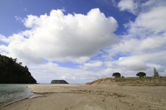 Whangamata Beach: Beach