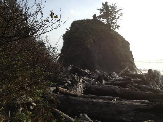 Second Beach Trail : Beach 2