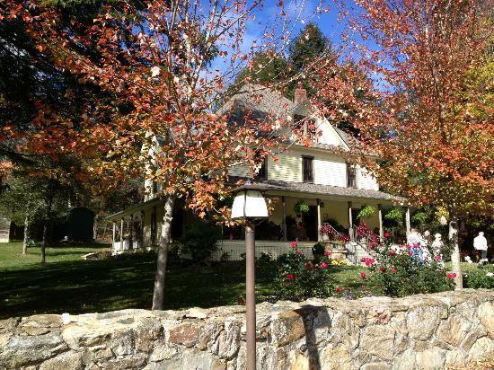 The Buck House Inn on Bald Mountain Creek: Beautiful fall day at Buck House Inn