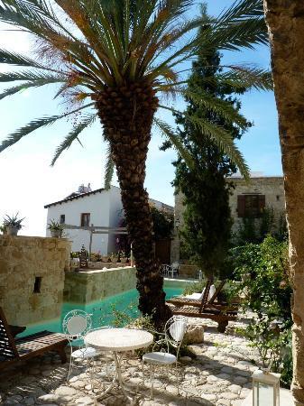 Modus Vivendi Holidays: garden