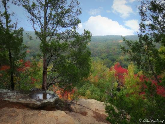 from Yellow Rock Trail in Devil's Den State Park