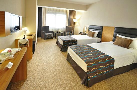 North Point Hotel : standart room