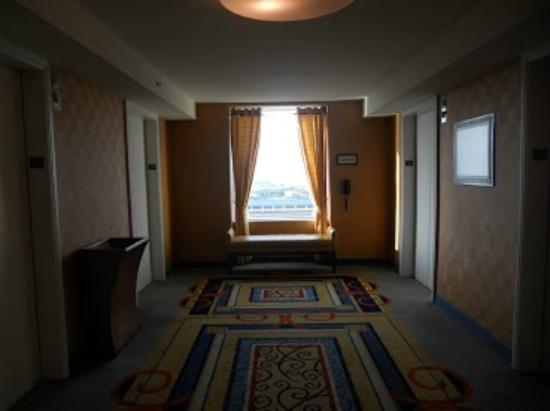 Tampa Marriott Waterside Hotel & Marina: Hallways