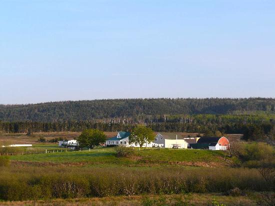 Reid's Century Farm Tourist Home: View of the Reid's Century Farm.