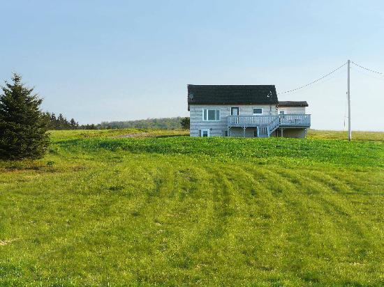 Reid's Century Farm Tourist Home: Bay Vista Cottage from below, looking inland.