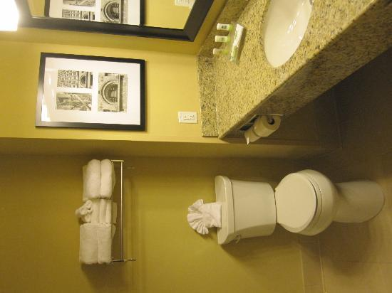 Country Inn & Suites By Carlson, Buffalo South I-90: tidy, modern, spacious bathroom
